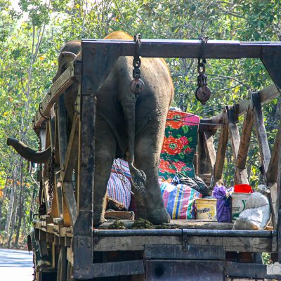 Transport in Thailand